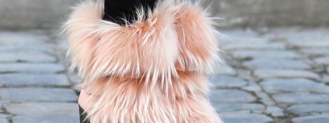 Furry Things